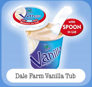 Dale Farm Vanilla Tub
